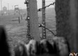 FOTOGALERIE 2012 | OBYČEJNÝ PŘÍBĚH ČLOVĚKA / GAWAFILM
